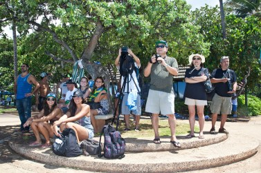 Brazilian Cheering Section and Photographers