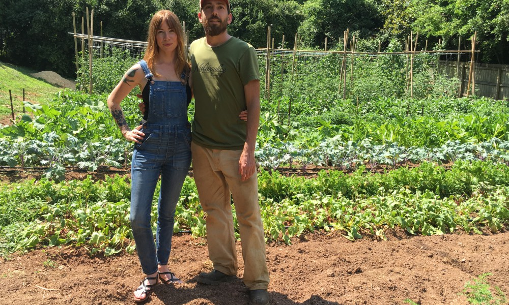 I got to visit Freewheel Farms in Atlanta where Carolynn gets all her chef supplies from her boyfriend's two urban farms that grow beautiful organic food and try to get it in low-income neighborhood shops where fresh organic produce is often scarce.
