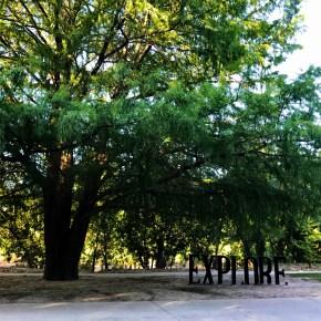 Exploring Buffalo Bayou Park