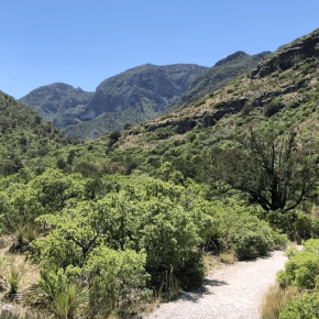 Hiking McKittrick Canyon in Guadalupe Mountains National Park