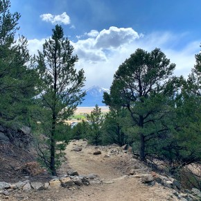 Whipple Trail – My Favorite Hike in Buena Vista, Colorado