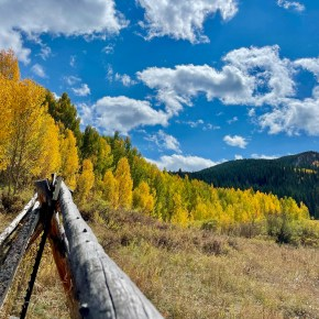 Leaf Peeping in Breckenridge and on Loveland Pass