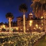 Best Places To See Christmas Lights In Florida  This Year