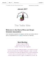 Trellis Wire 2017 03