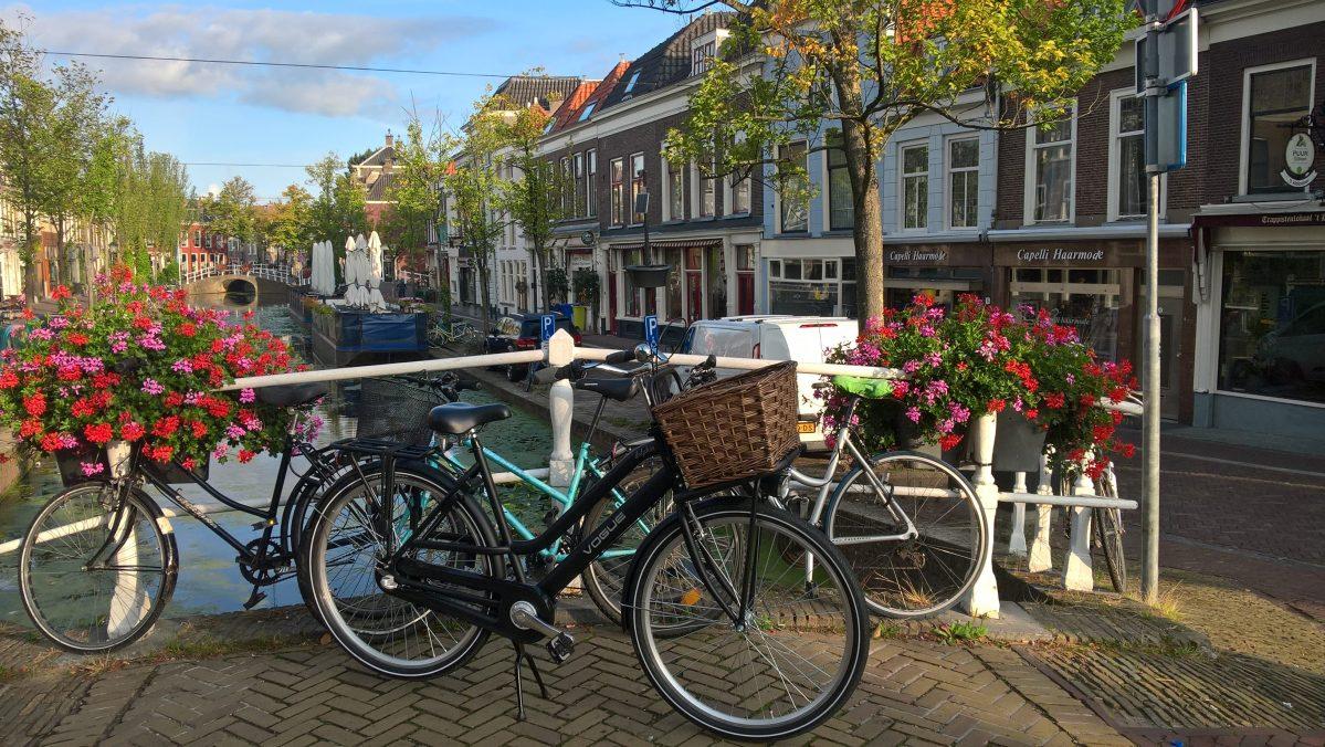 Holandia z dzieckiem na długi weekend