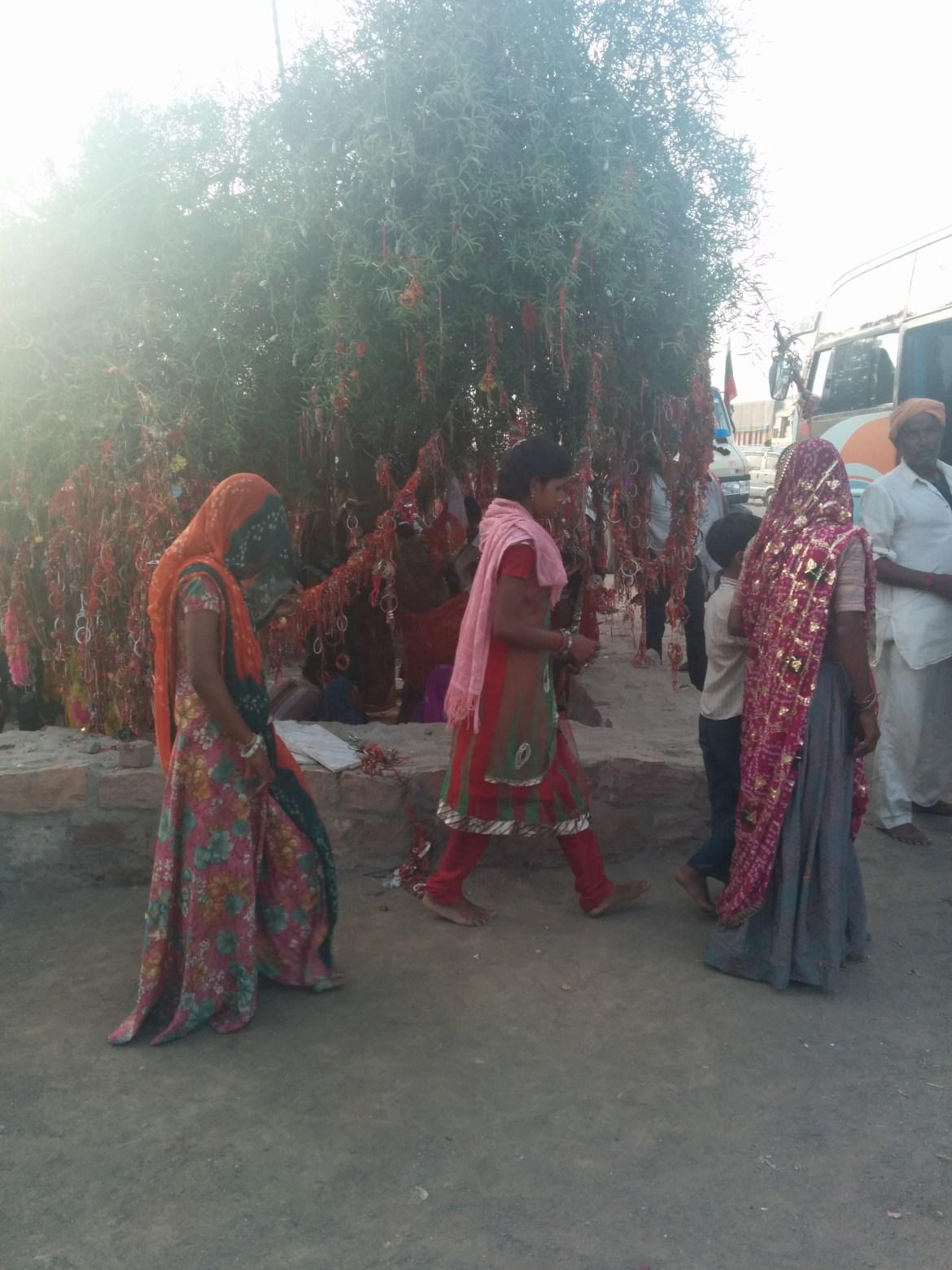 img 20140818 183032 - Radżastan - magia kolorów i zapachów Indii
