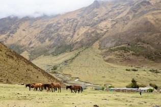 20181011 20181011  a110342 - Machu Picchu szlakiem Salkantay Na Własną Rękę - krok po kroku