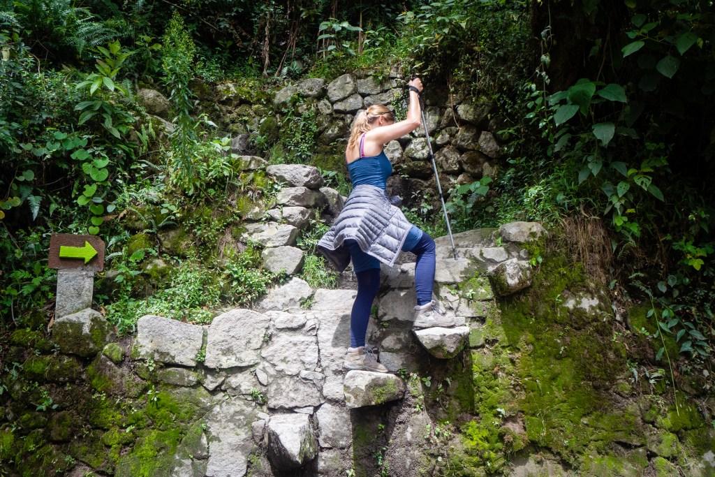 20181014 20181014  a140647 1024x683 - Szlak Salkantay - Machu Picchu na własną rękę
