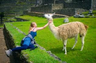 20181014 20181014  a140835 - Machu Picchu szlakiem Salkantay Na Własną Rękę - krok po kroku
