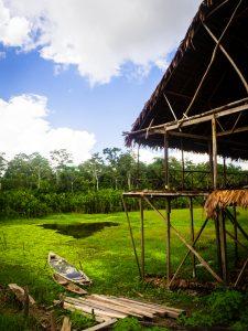 20181104  B040922 225x300 - Amazońska dżungla w Peru
