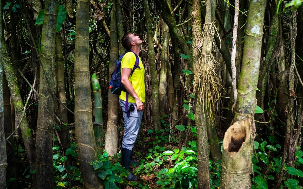 20181105  B051461 1024x640 - Amazońska dżungla w Peru