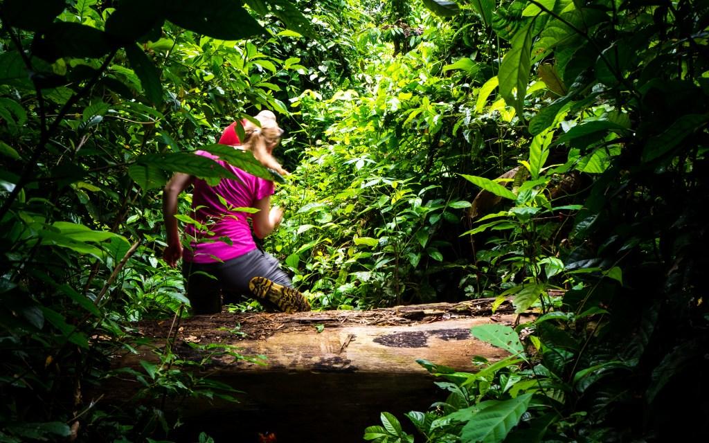 20181105  B051498 1024x640 - Amazońska dżungla w Peru