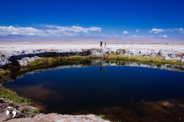 WhatsApp Image 2019 05 28 at 12.39.45 1 - Pustynia Atacama - gotowy plan i koszty podróży