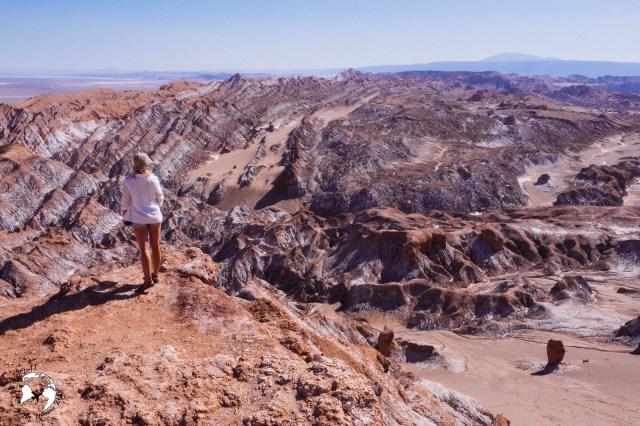 WhatsApp Image 2019 05 28 at 12.39.47 1 - Jak zaplanować wyjazd na pustynię Atacama?