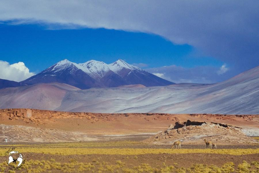 WhatsApp Image 2019 05 28 at 12.42.43 1 - Jak zaplanować wyjazd na pustynię Atacama?
