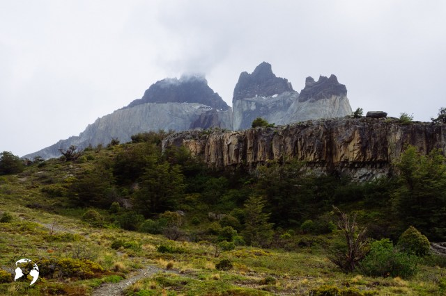 WhatsApp Image 2019 06 08 at 19.43.32 1 - Torres del Paine - czy warto?