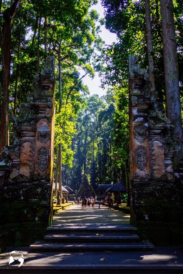 WhatsApp Image 2019 08 16 at 13.39.48 - Bali - gdzie pojechać, żeby się nie rozczarować?