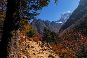 WhatsApp Image 2019 11 26 at 21.29.39 - Himalaje na własną rękę - trekking na EBC
