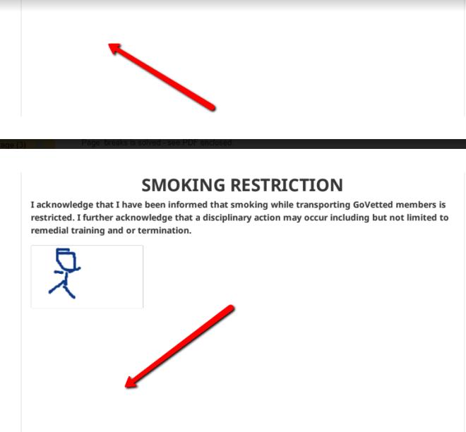 PDF of e-signature