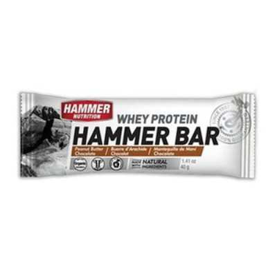 Hammer Nutrition Protein Recovery Bar