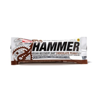 Hammer Nutrition Vegan Protein Recovery Bar