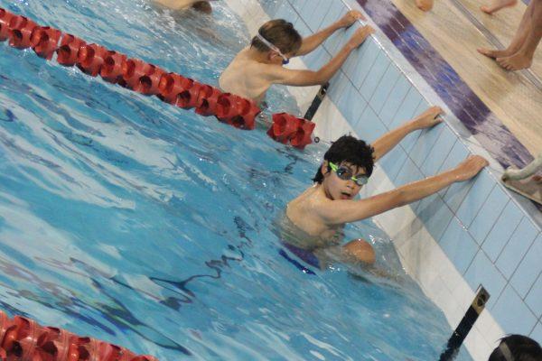 Swim Meet IMG_4226 2015