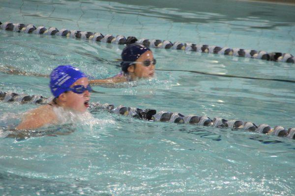 Swim Meet IMG_4350 2015