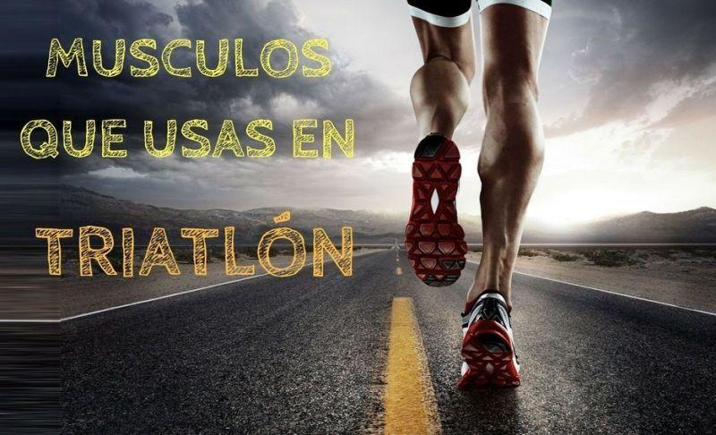 Musculos que usas en triatlon