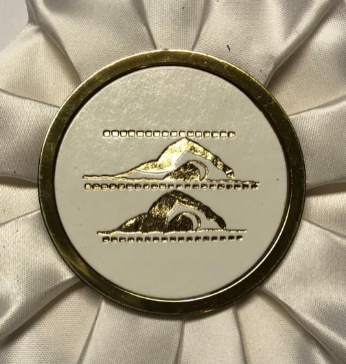 medal_swim_ribbon_2