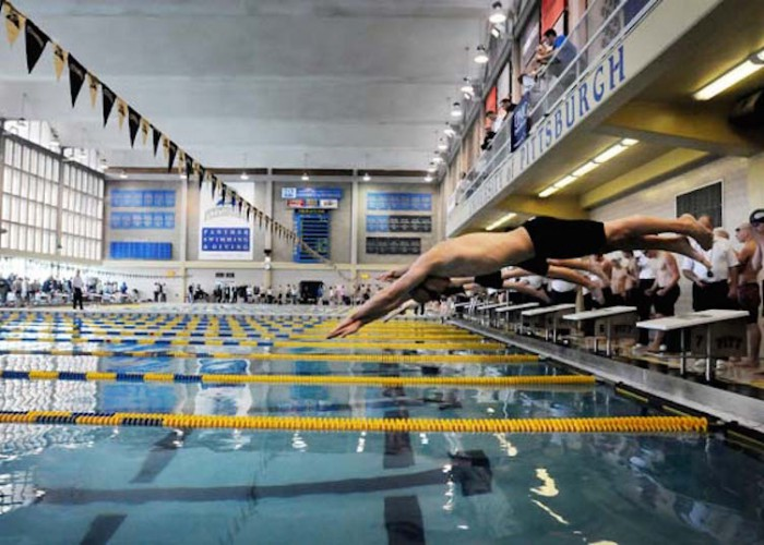Times photo by SALLY MAXSON WPIAL swimming championships at the University of Pittsburgh Thursday. Lead swimmers dive into the water at the start of the boys 200 freestyle relay.