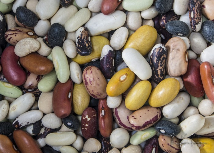 beans-legumes-kenneth-leung