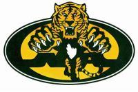 north-allegheny-logo