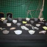 John Pitt Ceramics