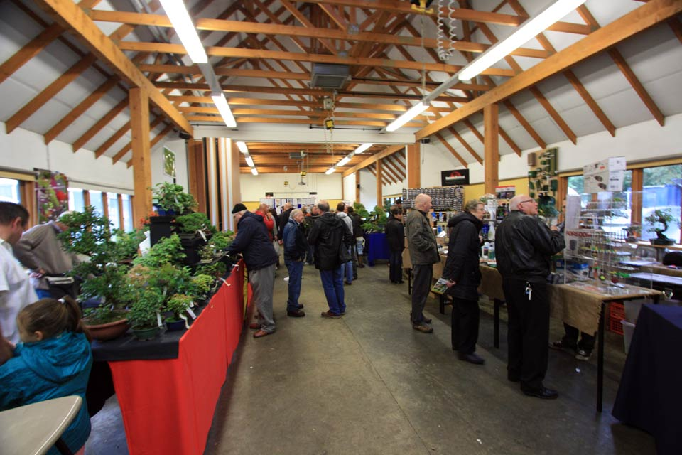 Capel Manor Bonsai Show traders