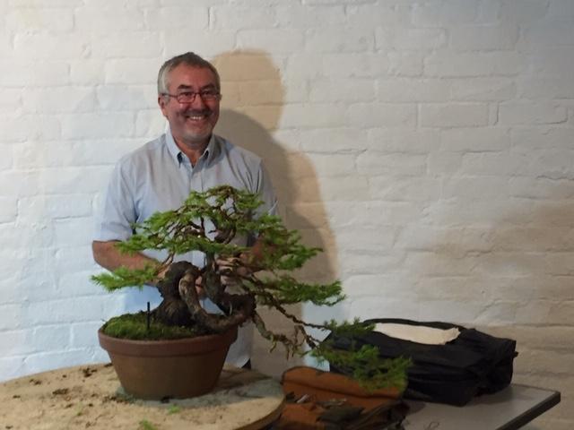Steve Tolley bonsai demonstration