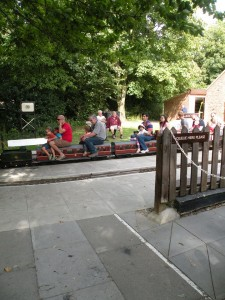 mini train at coate