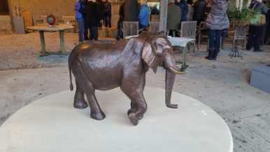 a bronze version of hoarusib elephant