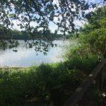 Lake at The Lawn