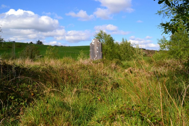 Swinford Famine and Paupers Graveyard at the beginning of project.
