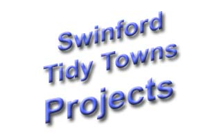 Swinford Tidy Towns projects