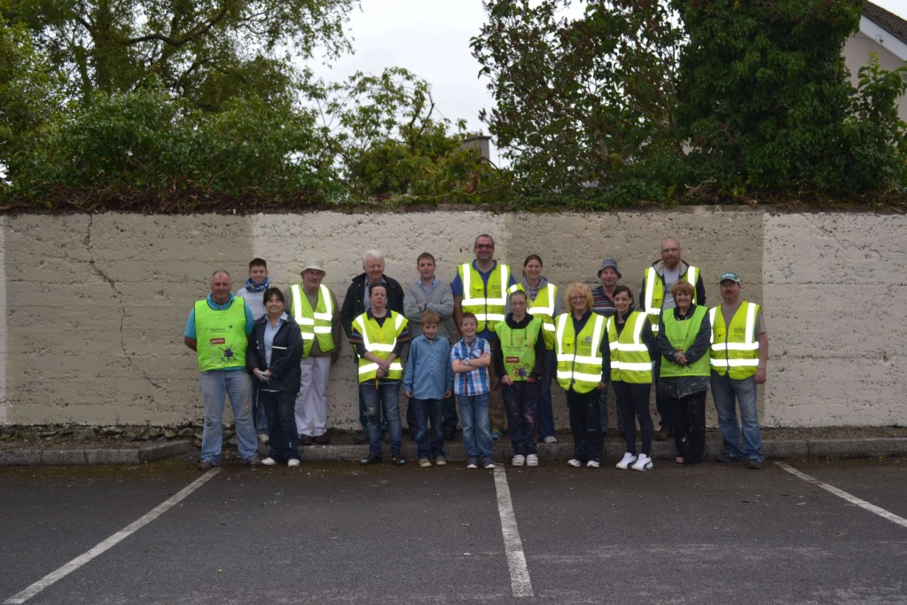 Dulux Project Volunteers