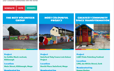 Swinford Lets Colour Project Named Most Colourful Project