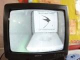 Camera in Swift nest box 1.