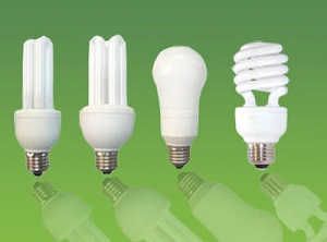 energy efficient light bulbs