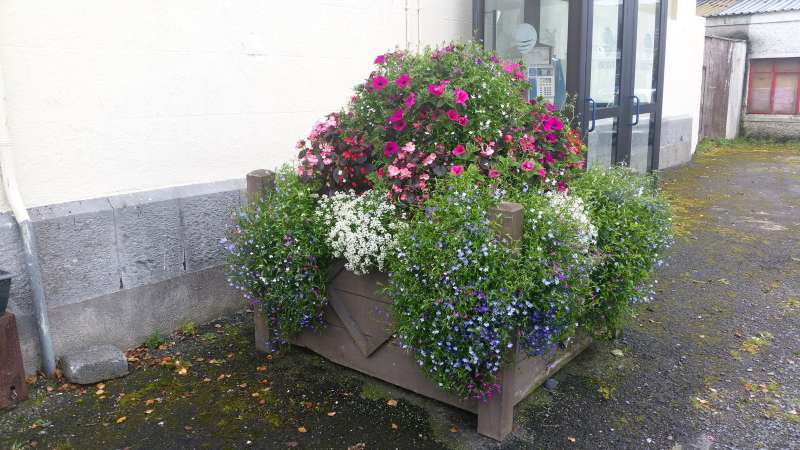 swinford courthouse planter
