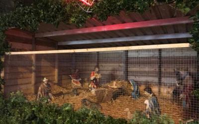 New Christmas Crib