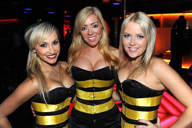 Strip Clubs Brisbane