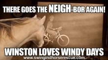 WINSTON-WINDY-DAY