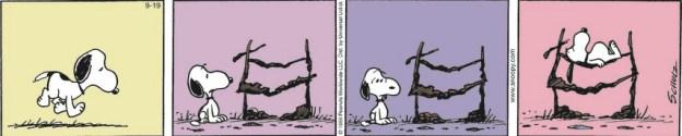 Peanuts - pe_c130919.tif