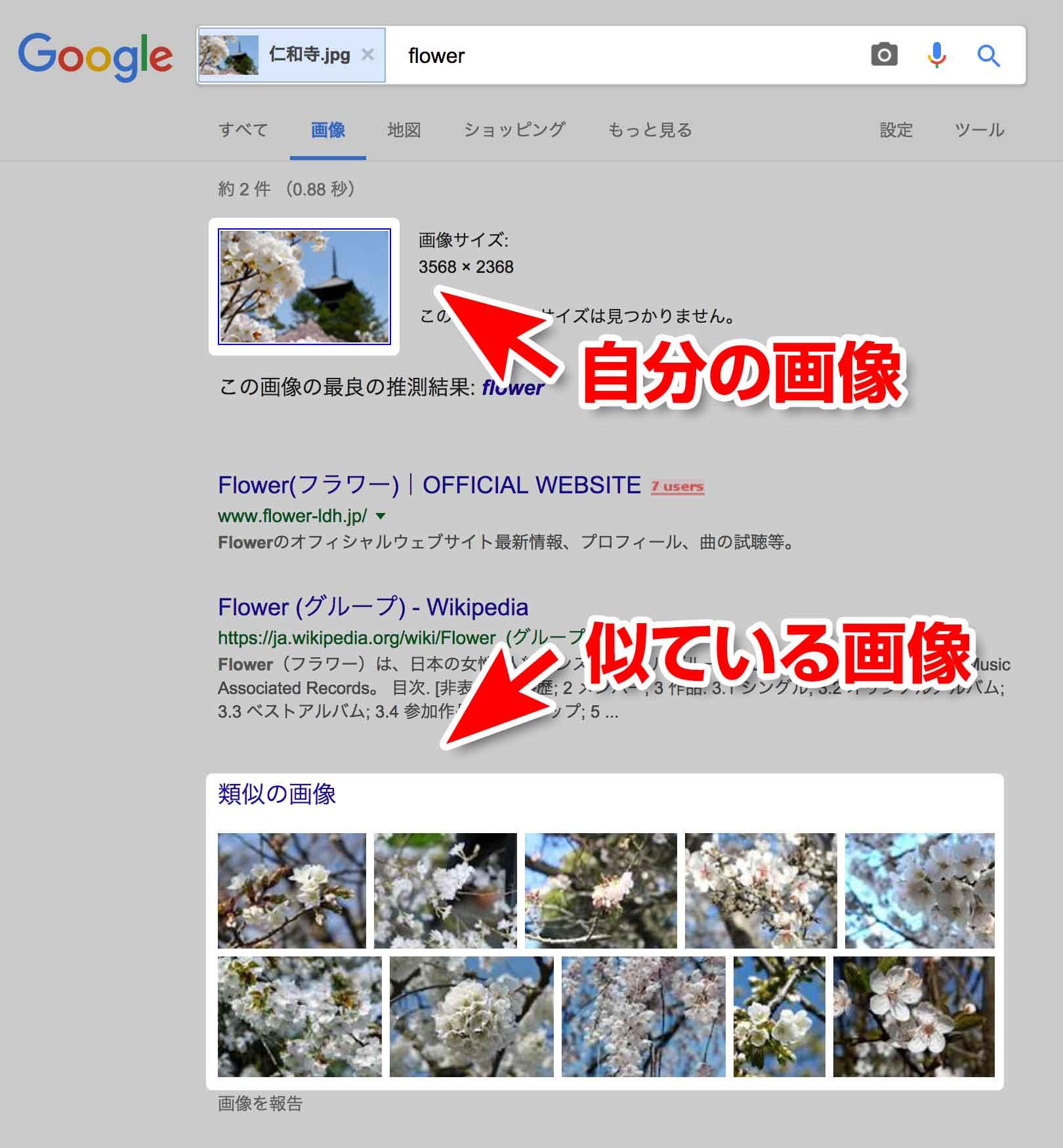 似ている画像検索